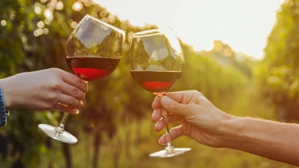 Two wine glasses cheers in a vineyard.